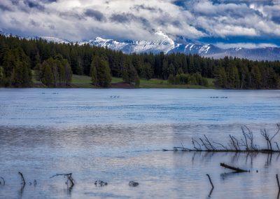 duck-lake