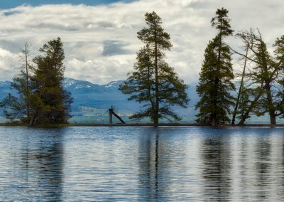 pine-lake-pano